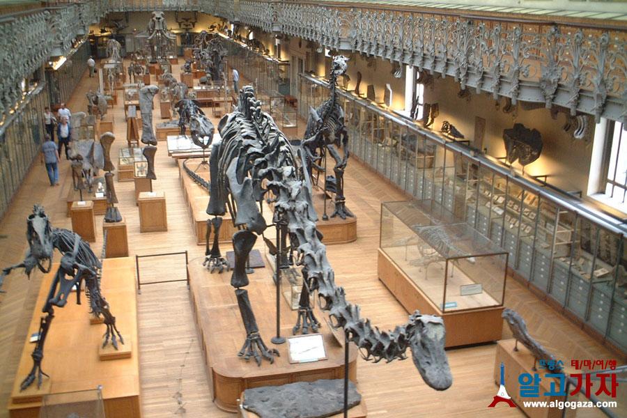 자연사 박물관